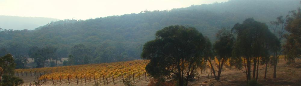 Wimmera Hills